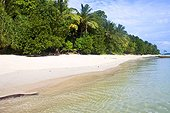 Tropical paradise beach, Beach No.5, Havelock, Andaman Islands, India
