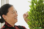 Chinese woman tending plant