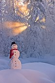 Snowman with red scarf and top hat amongst hoar frosted trees back lit by sunrays shining through fog, Russian Jack Springs Park, Anchorage, Southcentral Alaska, Winter. Digitally enhanced.