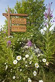 City of Seldovia City Park sign and wildflowers, Southcentral, Alaska, Summer