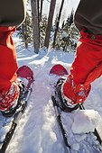 Close-up wide angle shot looking through a person's legs from the back while wearing red gaiters and red snowshoes