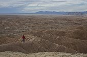 adult woman hiking along the ridge of the badlands section of Anza Borrego Desert State Park, California.