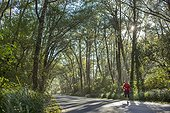 Adult woman running through a beautiful tunnel of trees inside Cape Disappointment State Park, Washington.