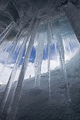 Icicles in Athabasca Glacier ice cave, Alberta, Canada