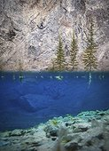 Underwater view of rock climber, Banff National Park, Alberta, Canada