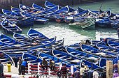 Harbour with fishing boats, Essaouira, Marrakech-Tensift-El Haouz, Morocco, Africa
