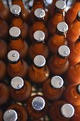Bend, Oregon, United States of America.. Brown bottles filled with cannabis infused ginger ale.
