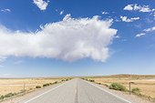 Hanksville, Utah, USA.. An empty road lined with sagebrush passes through remote lands.