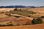 Typical Orcia Valley landscape, with farmhouses and the reddish hues of the land of the Crete Senesi near Pienza (Mediterranean area, Pienza, Orcia Valley, Siena district, Siena district, Italy)