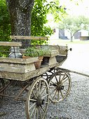 Flower pots on old wagon