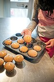 Woman Removing Cupcakes from Baking Tin